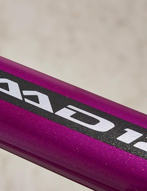 Metallic flake paint finish gives the Cannondale an exotic, expensive look