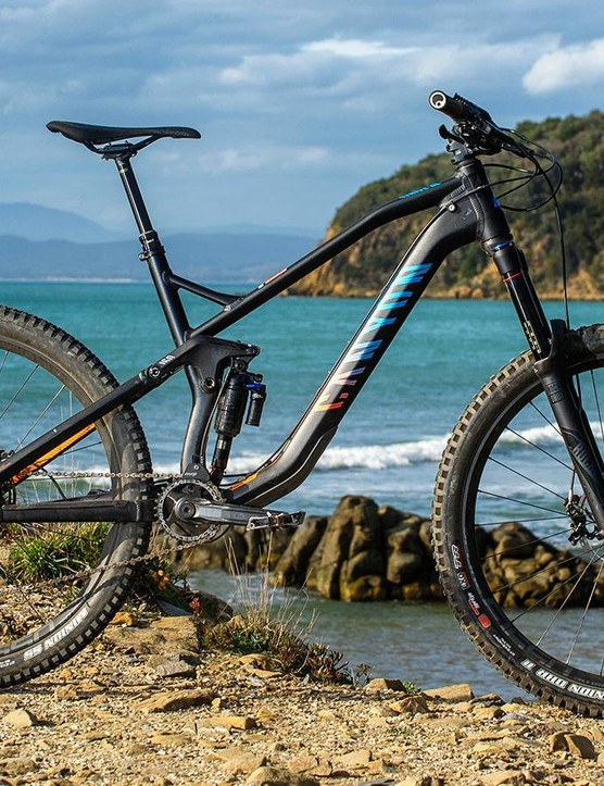 Canyon's Strive is ubiquitous on the enduro circuit