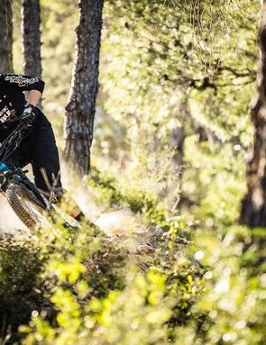 The new Strive is an easy bike to feel comfortable on and doesn't restrict any movement