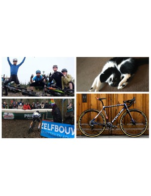 This week we've watched some world cup 'cross, braved the cold, stroked some cats and struck some sick poses