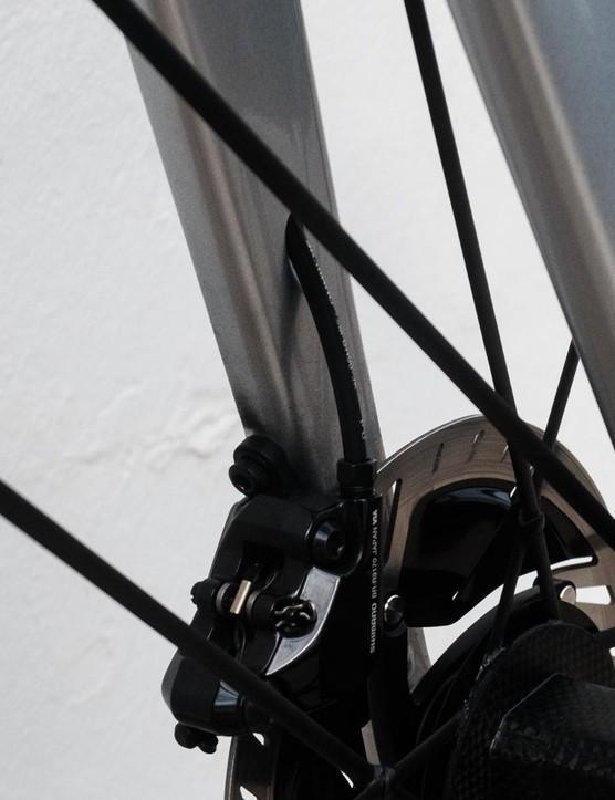 The brake hose exits the left fork leg just above the caliper