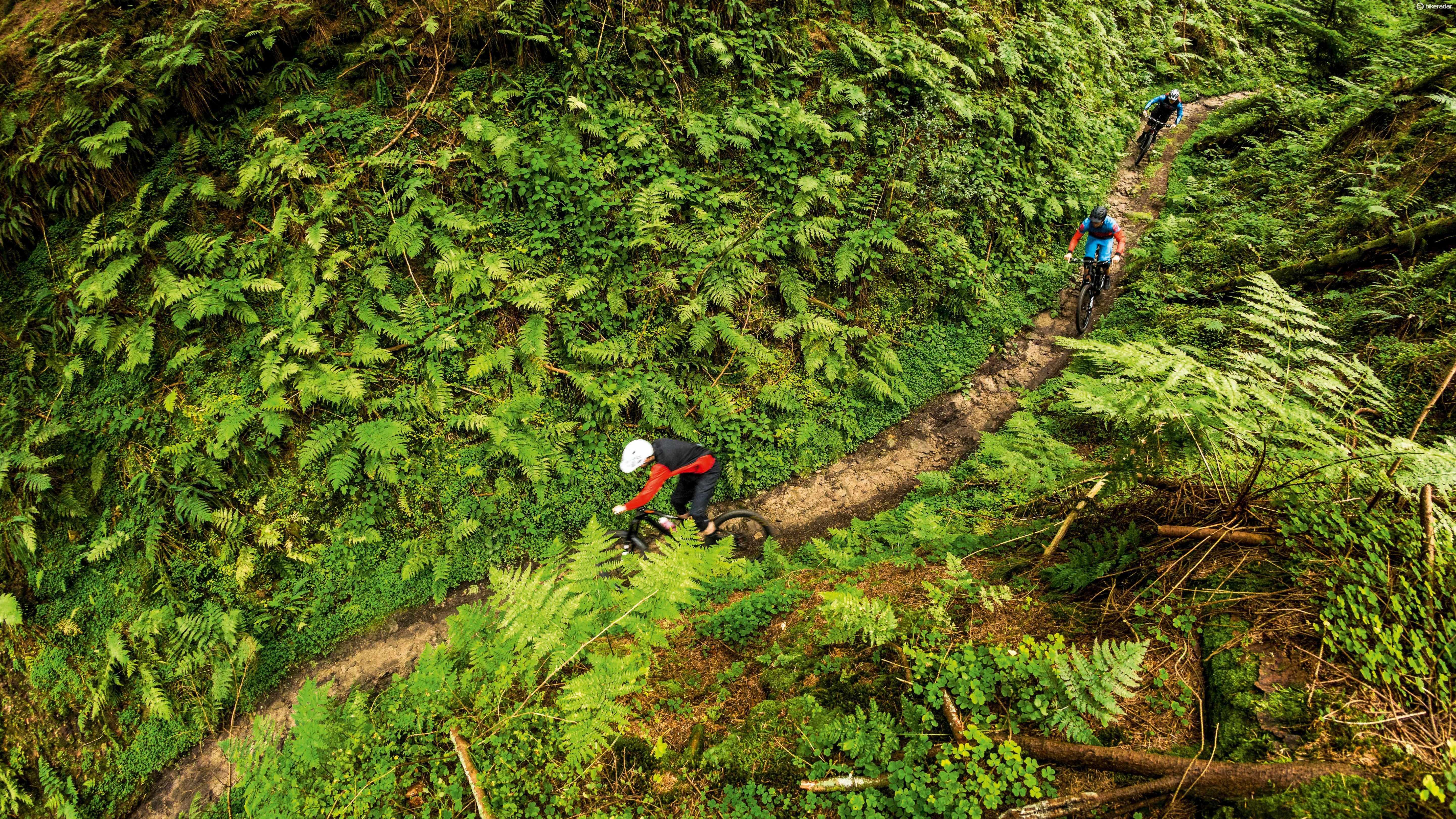 Dalby is one of the biggest trail centres in England, so you won't be bored