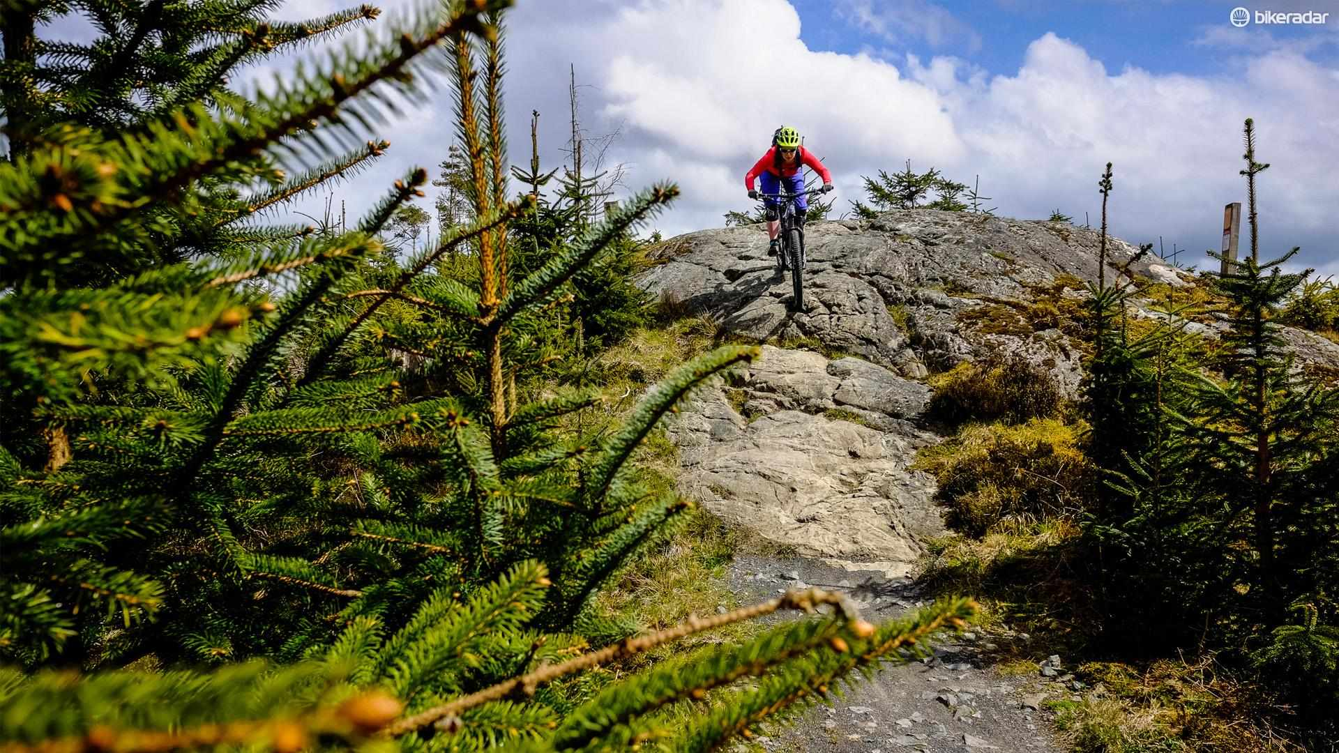 Davagh Forest has a swooping trail network and several rock features to explore