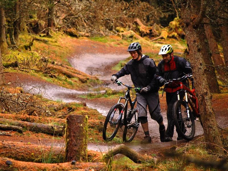 Improve your mountain biking skills with Dirt School DVD