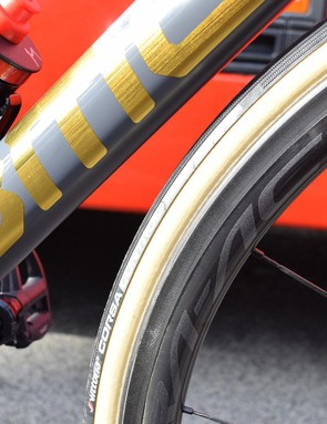 Gold decals for the Olympic champion stood out in the sun at the race start in Compiegne