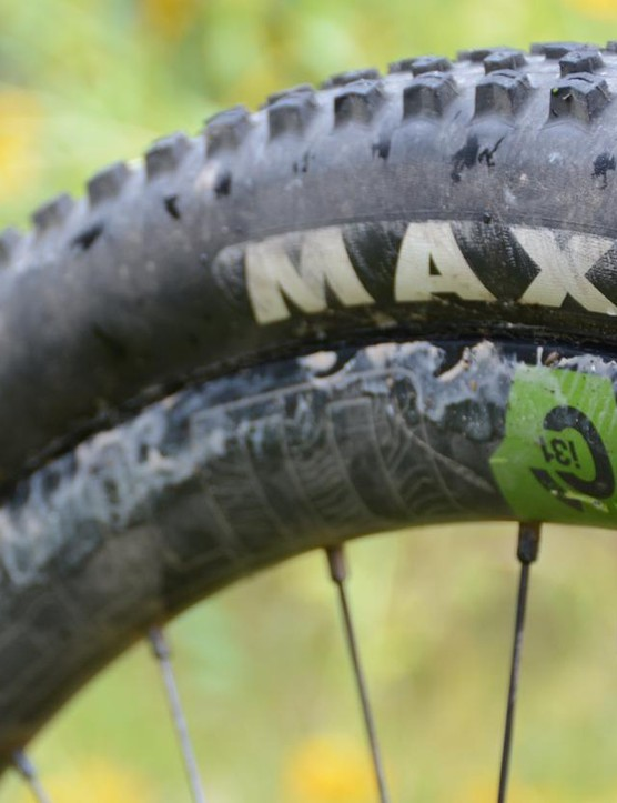 Even with EXO casings, Maxxis's Ikon tires are simply too light for the rocks of the Rocky Mountains