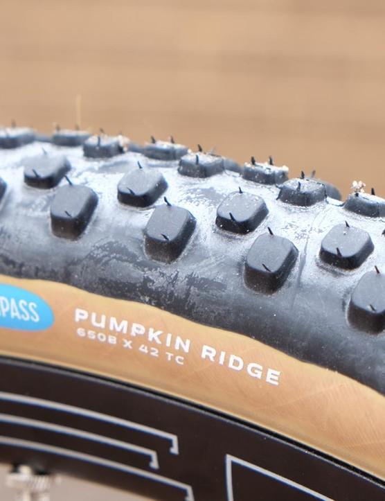The Compass Pumpkin Ridge looks like a good choice for bikepacking