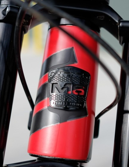 Even the head tube badge is a pretty thing to look at