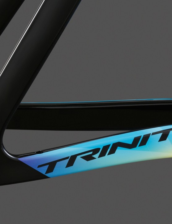The Trinity Advanced TT's horizontal dropouts allow for fine tuning of the rear-wheel placement