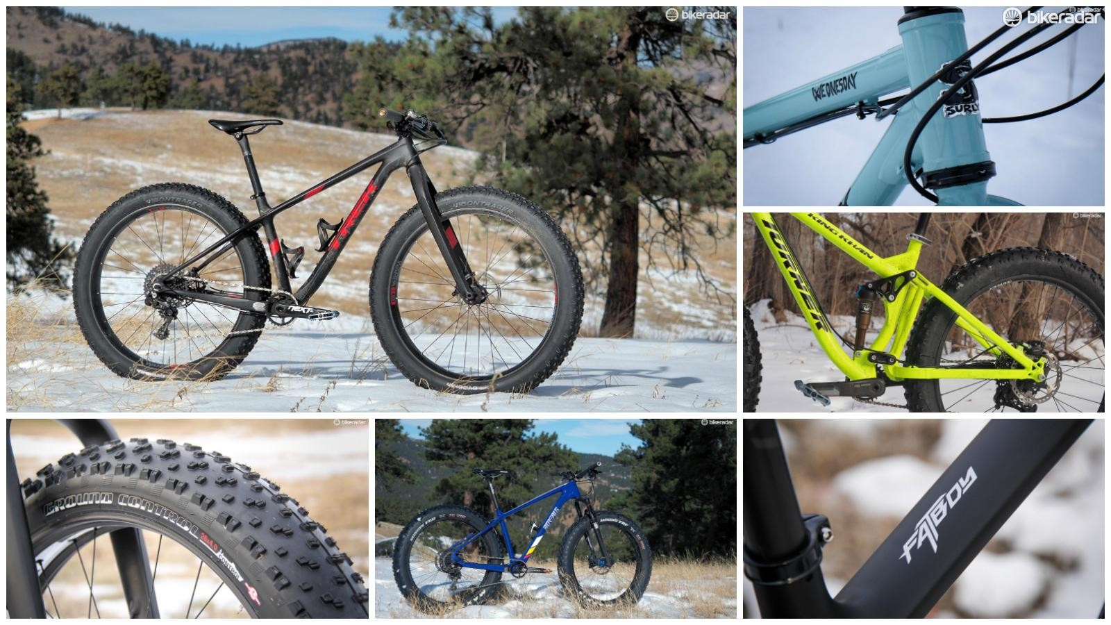 Here's a look at some of this year's best fat bikes