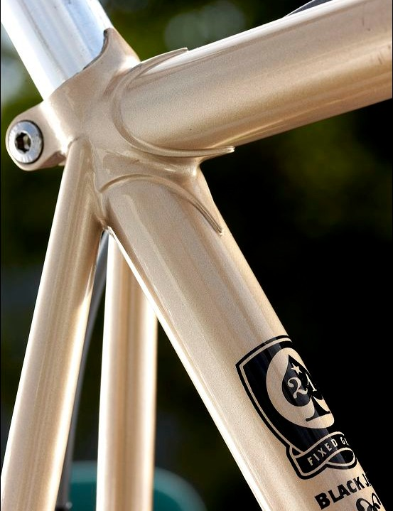 The lugged steel frame is fairly relaxed in its angles