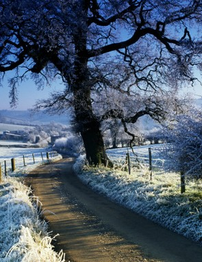 The lanes are quiet as a church mouse on the day after Christmas