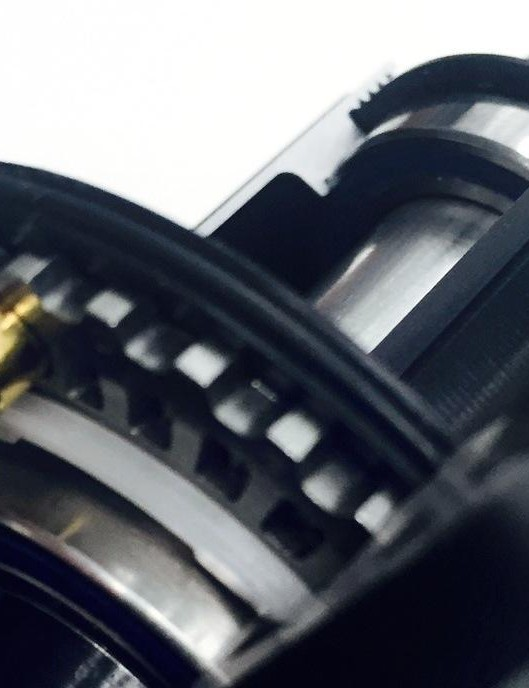 The rear Cognition hub works with magnets instead of springs to move and engage two ratchet rings