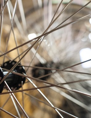 What features would your perfect bike shop offer?