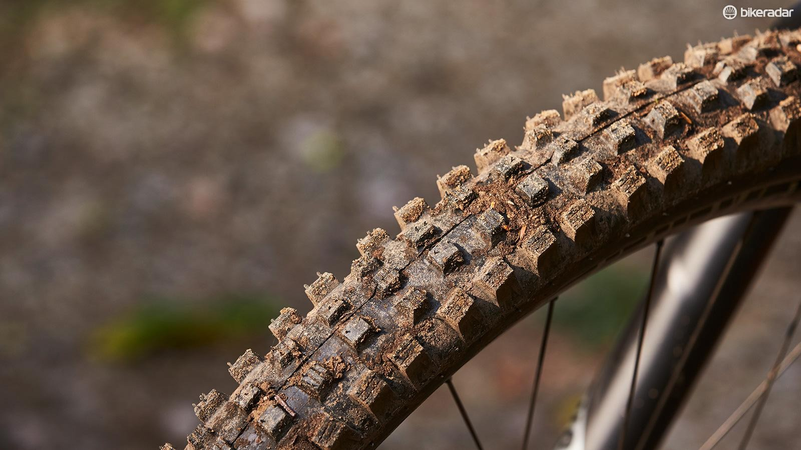 Schwalbe Magic Mary Snakeskin TrailStar rubber up front