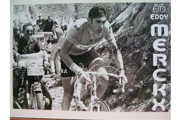 To Gonadicus - Eddy Merckx.