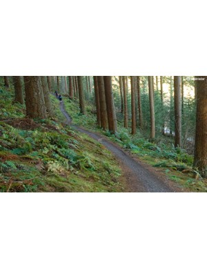 Riding fun man-made trails can help to protect the natural environment