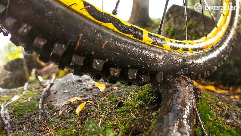 One by-product of mountain biking is exposed exposed tree roots