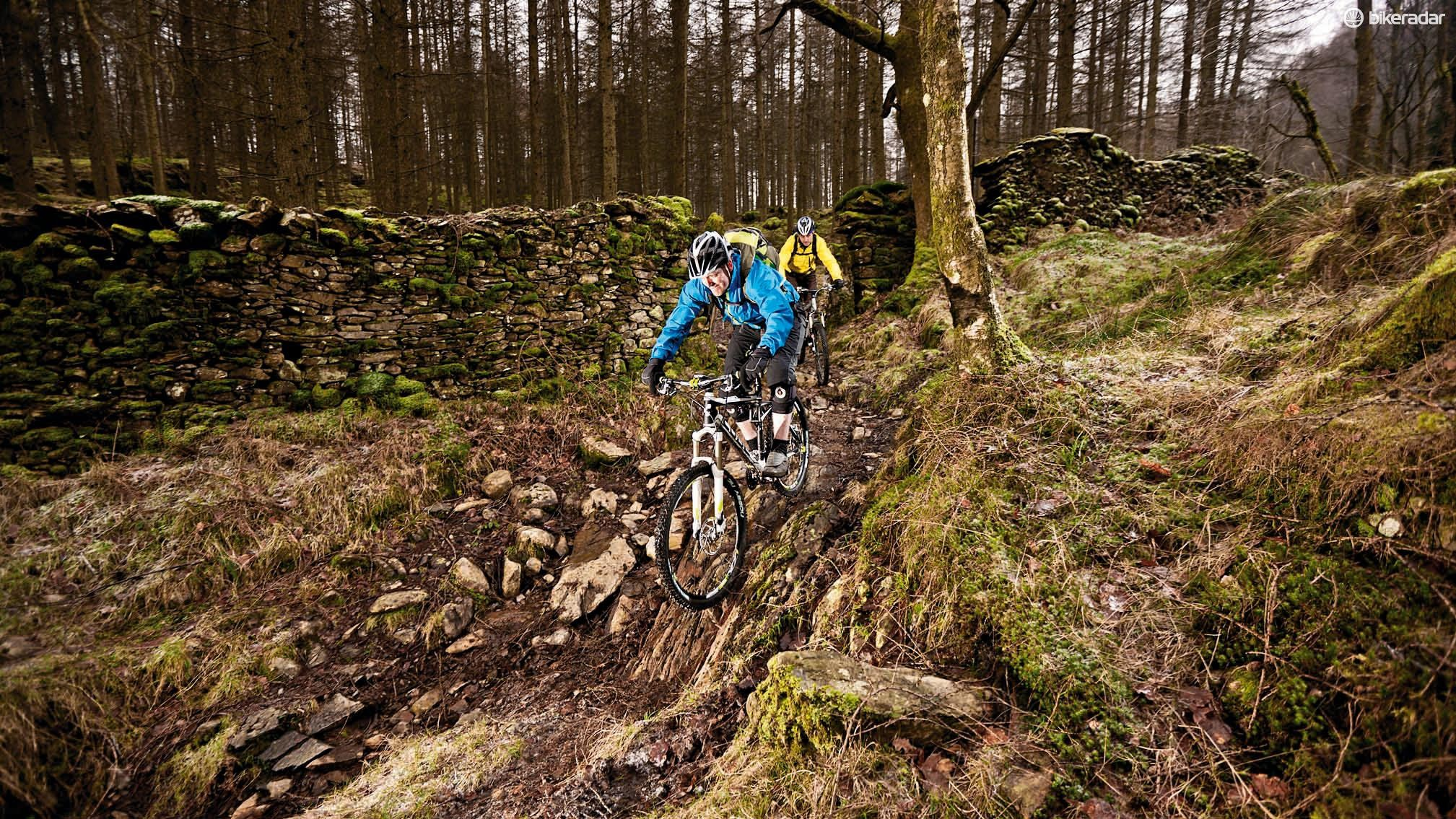 Grizedale is part of the Forestry Commission Super Six