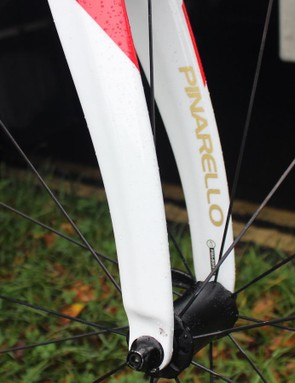 Gold decals on the forks
