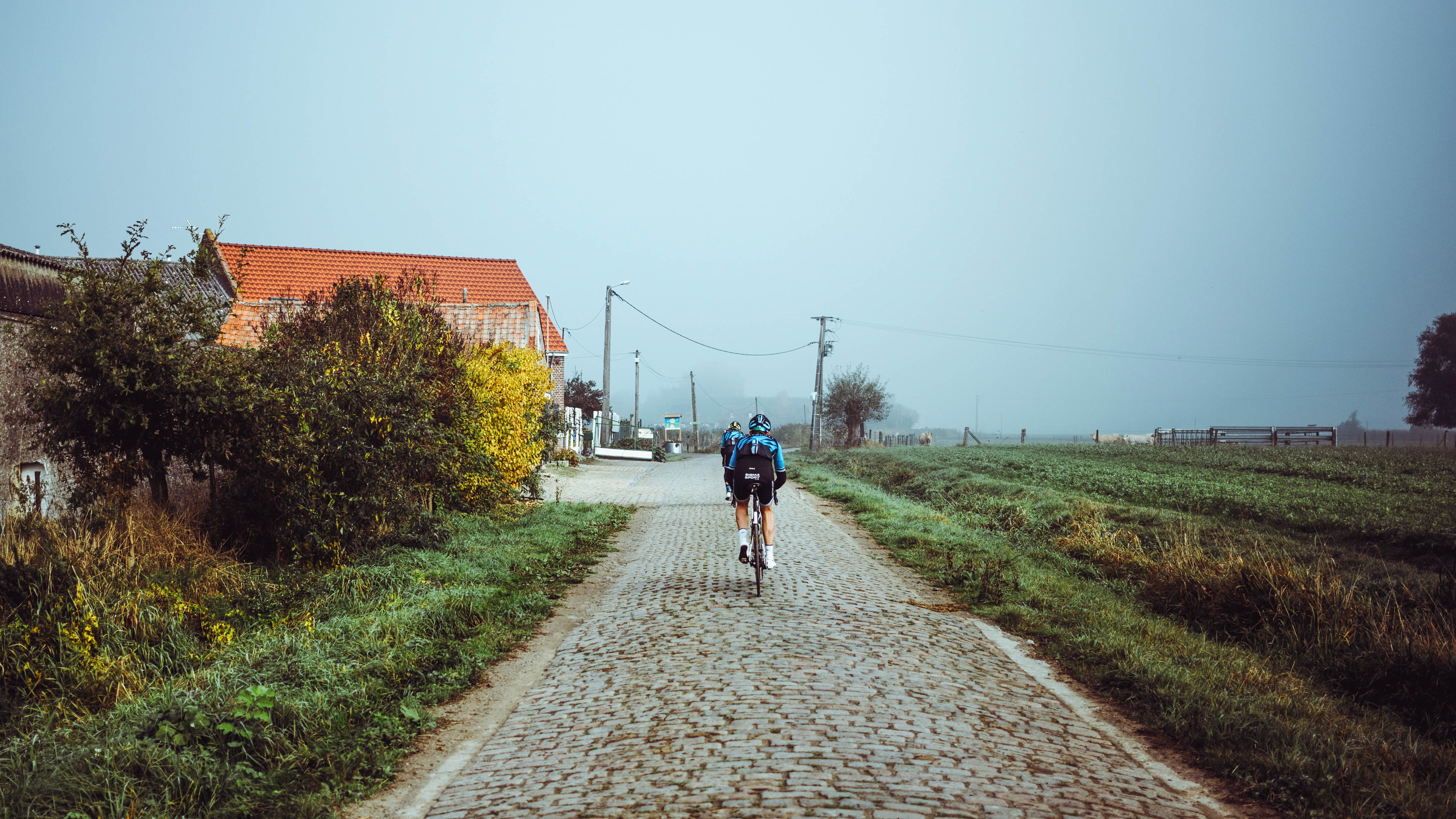 We tackled seventeen secteurs of cobbles in all
