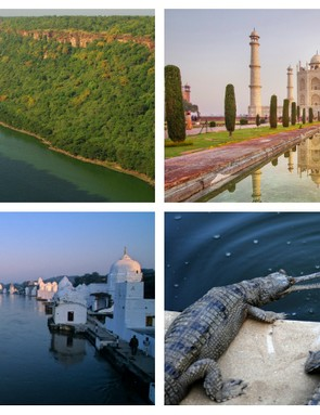 These are just some of the incredible things you can see on India's new cycle superhighway
