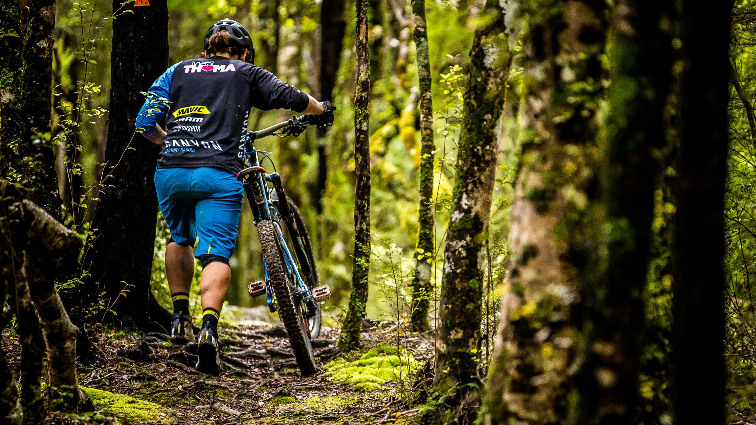 Will the first half of the 2017 EWS be completely wet? If so, that won't bother Thoma