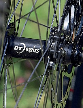 Custom speccing - our bike came with DT Swiss hubs