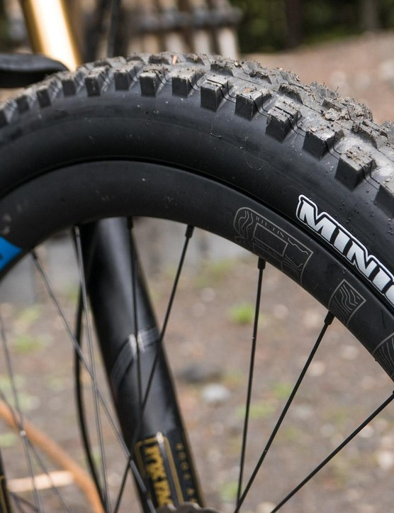 Fat WTB Ci31 carbon rims are paired to shiny Hope Pro4 hubs