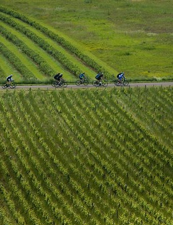 Our test ride wound its way through the Vineyards and farmland of the Cote D'or
