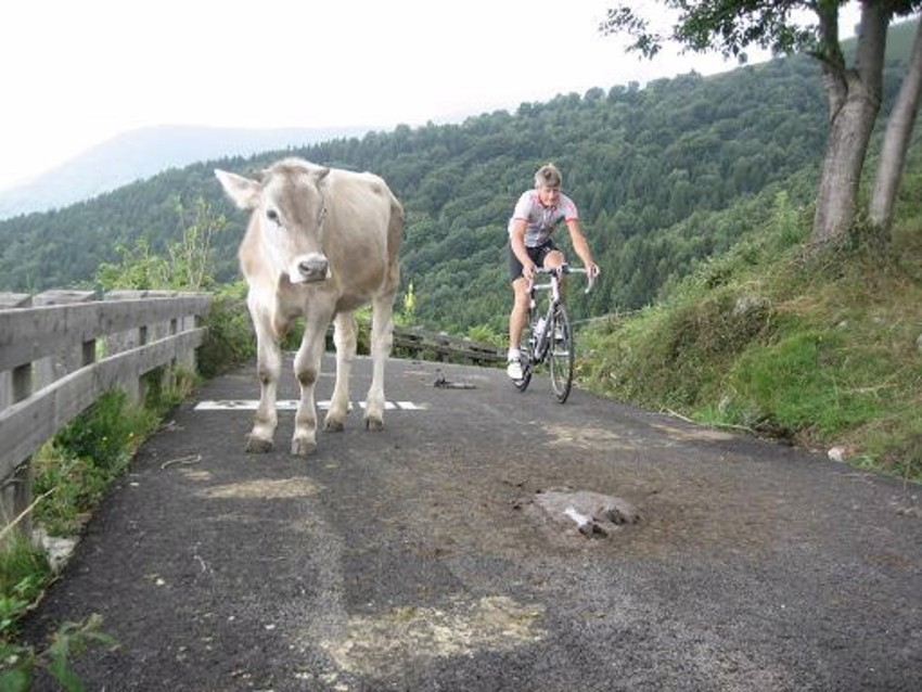 Cycling fans come in all shapes and sizes in Europe.