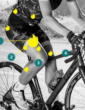 Liv bicycle designs emphasise women's lower body strength