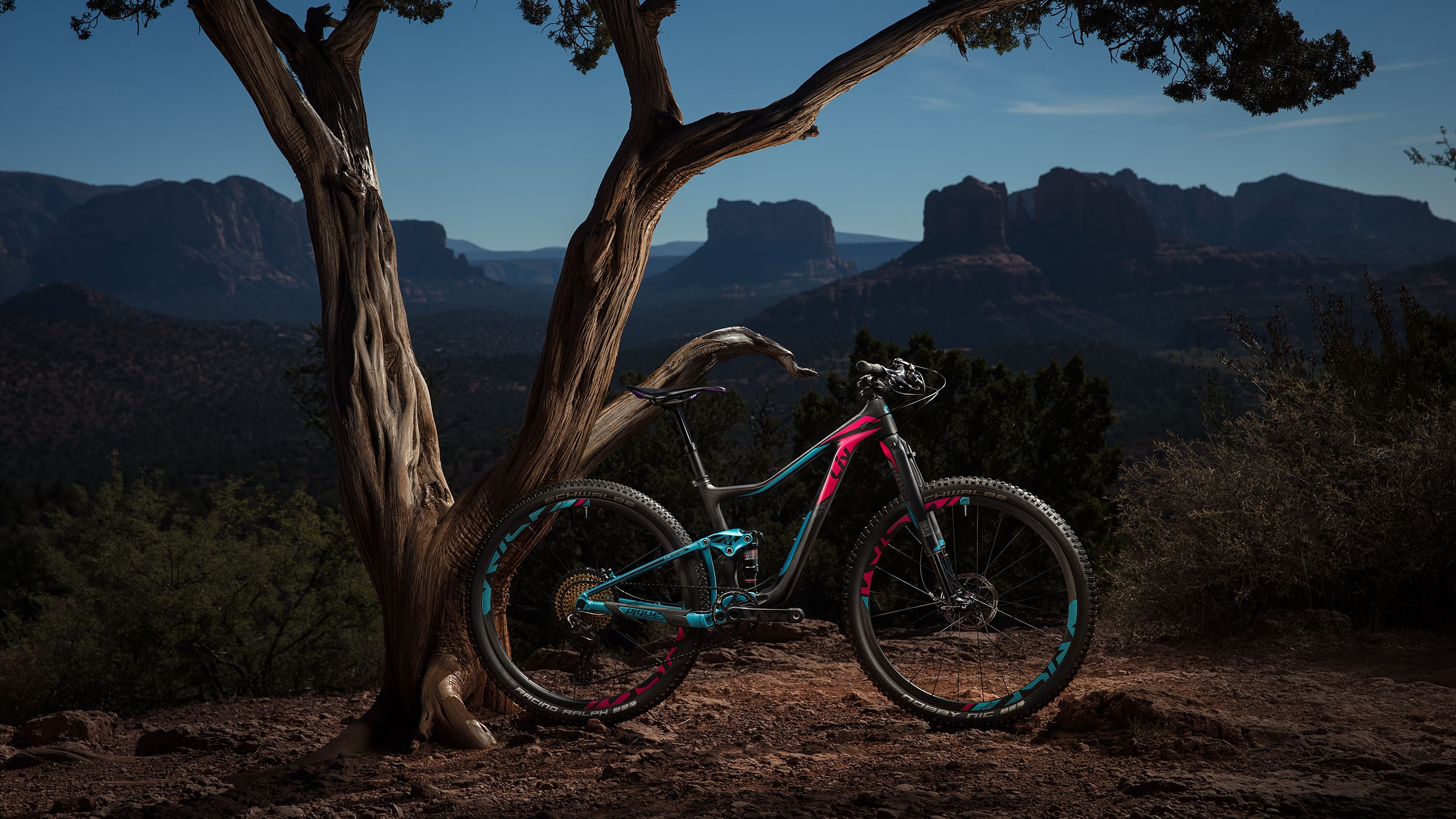 The 120mm-travel Liv Pique is an aggressive XC bike