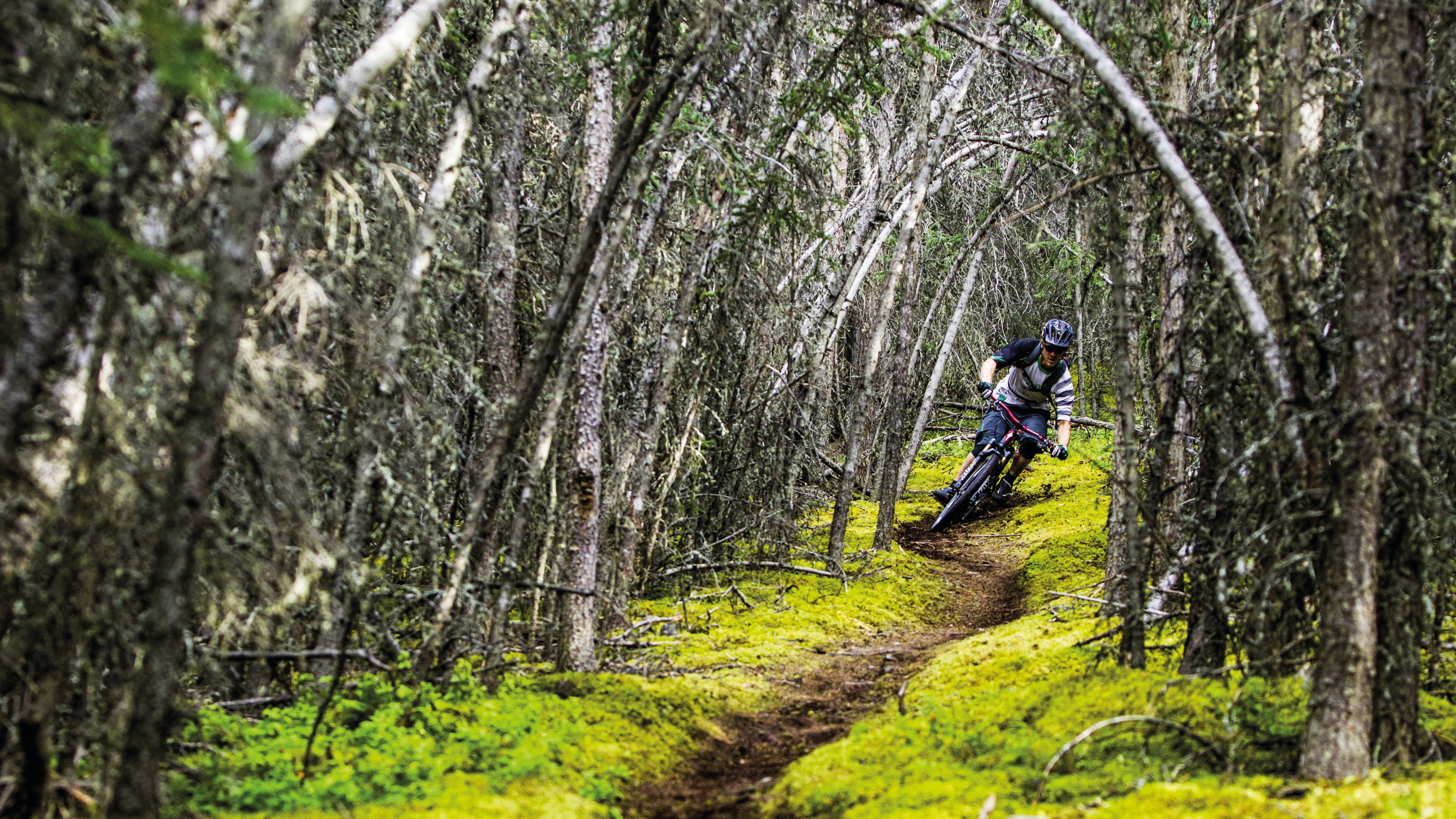 Ride the Whitehorse trails in the Yukon Territory
