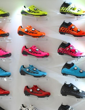 There are some 16 models that can accept the ANT+/Bluetooth power meter sole