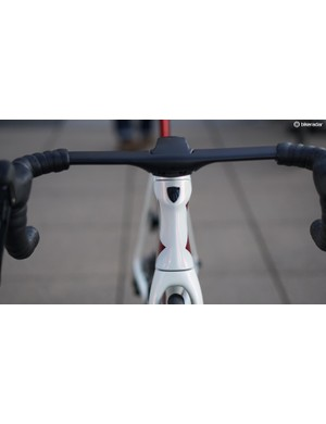 The ICON paint covers the frame, fork and seatmast but not the bar or stem