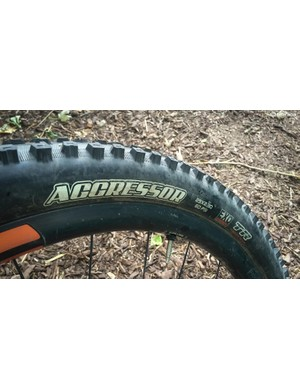 The Aggressor is a relatively new tread from Maxxis that is now available in a 29x2.3 version