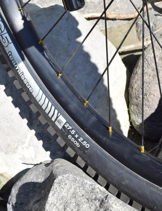 Might be Bontrager Line rims, might not be…