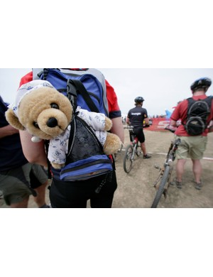 A Careflight bear waits in transition