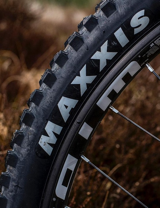 2.5in tyres sit on a 29mm internal width WTB rim