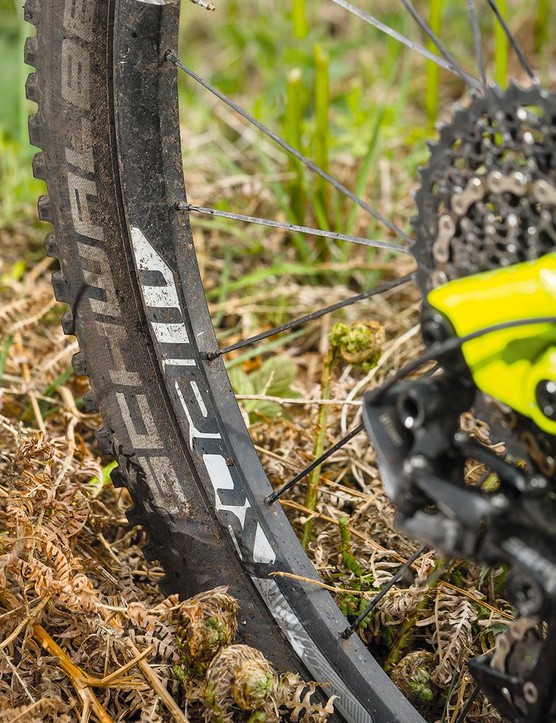 SRAM Roam 40s are wrapped a Schwalbe Magic Mary up front and a Rock Razor out back