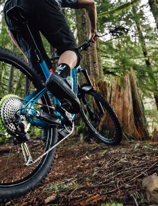 Shark is designed to be used with a larger chainring, therefore boosting your gear range at both ends