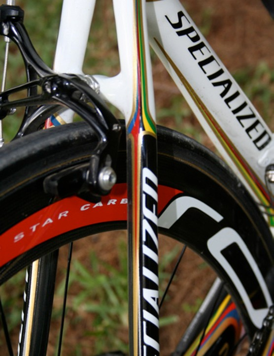 Seat stays on the SL2 are as straight as the rest of the frame is curved.