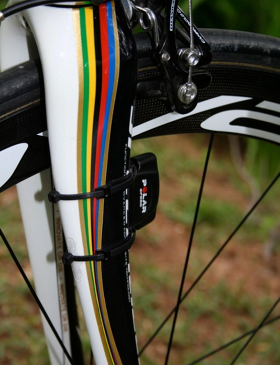 A Polar wireless sensor fitted to Bettini's fork leg helps the CS400 keep an eye on the speed.