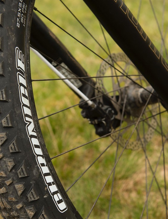 These tyres from Maxxis are cut-resistant and abrasion-resistant