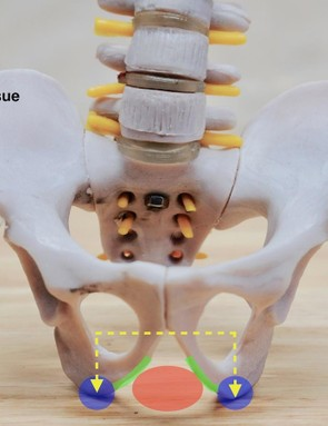 The design foundation of the Power rests on a clinical evaluation of the anatomical features of the pelvis