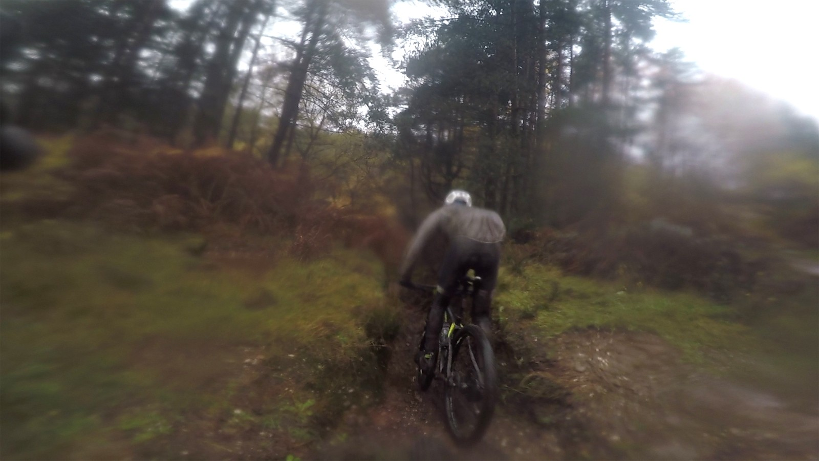 The route through Cannock Chase was remarkably technical for a gravel ride