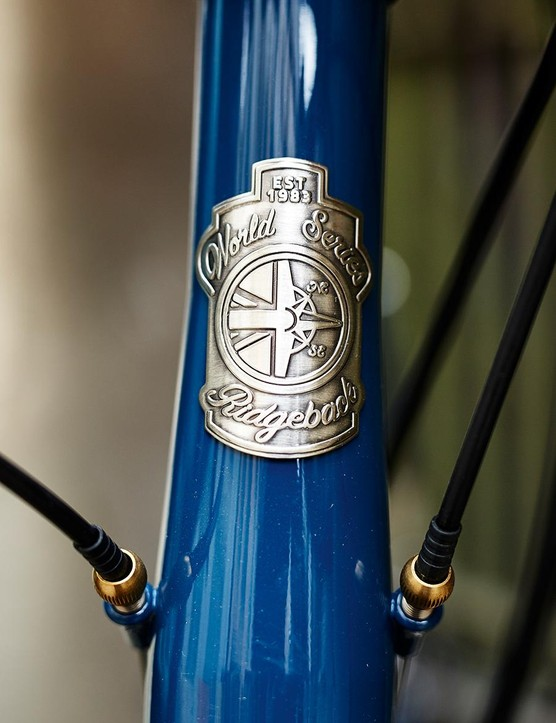 Lovely head badge detail