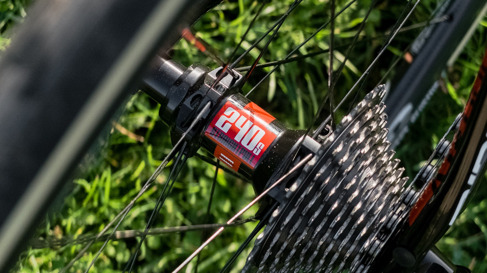 The Forza C30 wheels spin on ultra-dependable DT Swiss 240s hubs