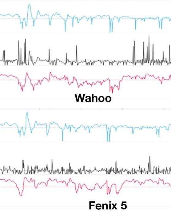 Wahoo vs. fenix 5 road